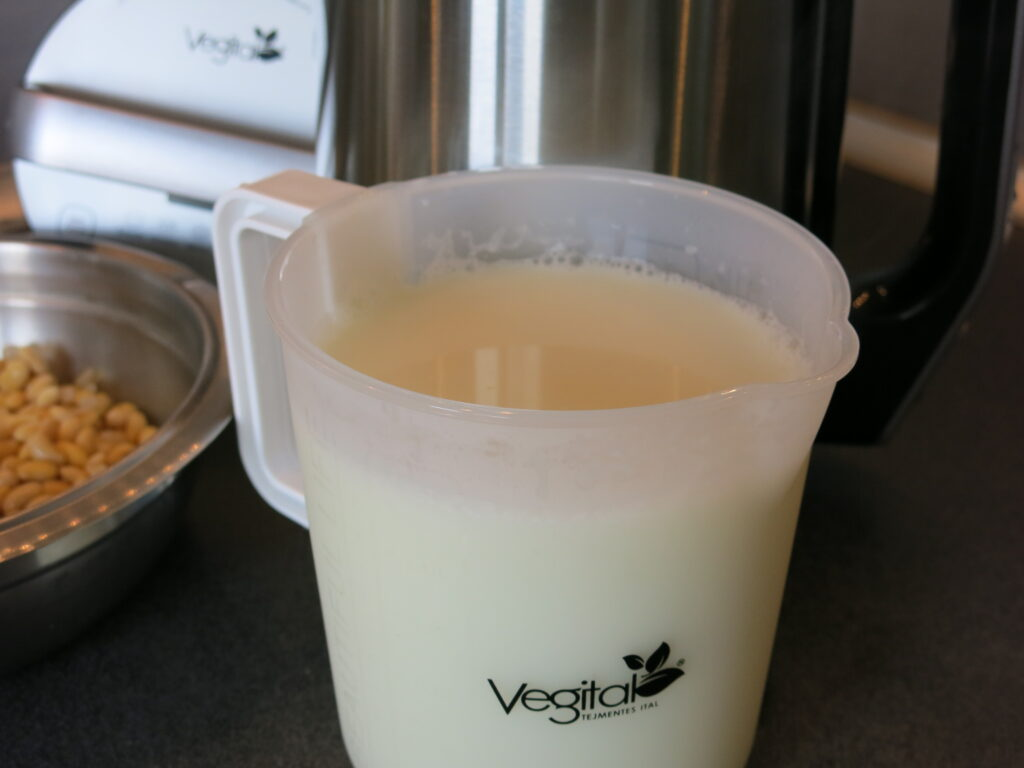 Domowe mleko sojowe Vegital Silver Digital